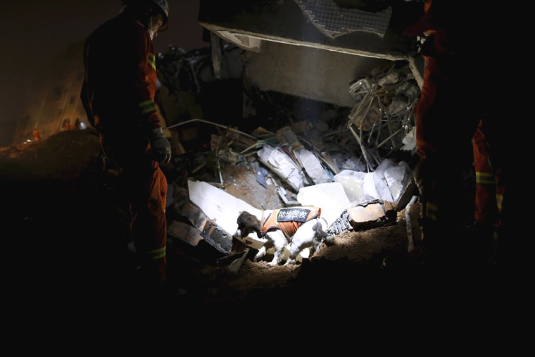 Image: Firefighters with a sniffer dog search for survivors among the rubble of collapsed buildings after a landslide hit an industrial park in Shenzhen