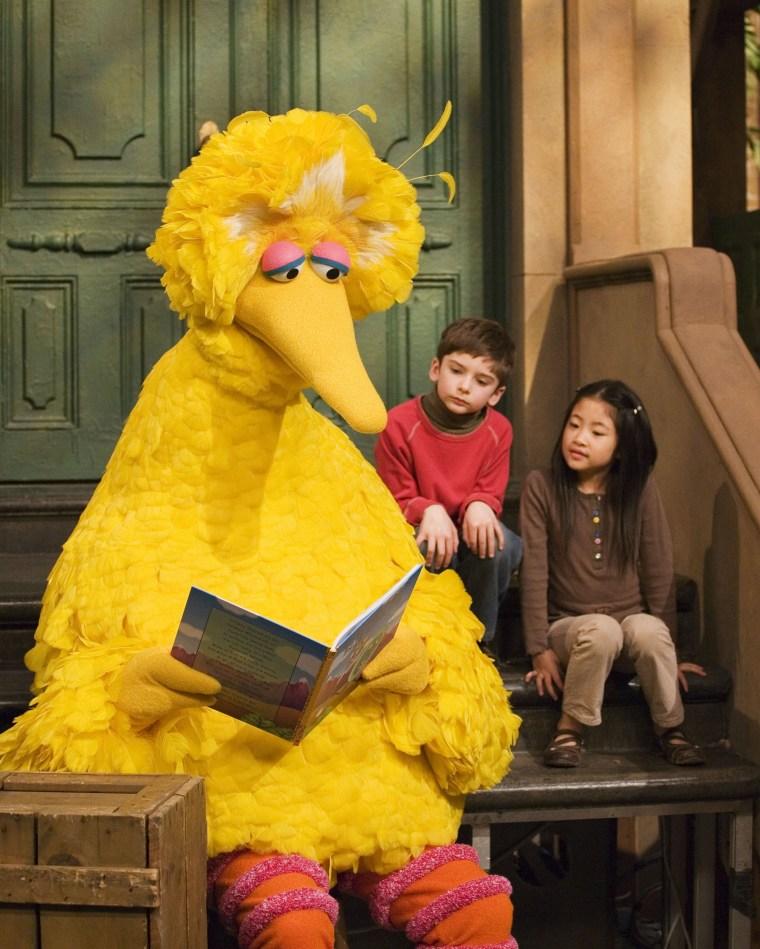 Caroll Spinney, Big Bird