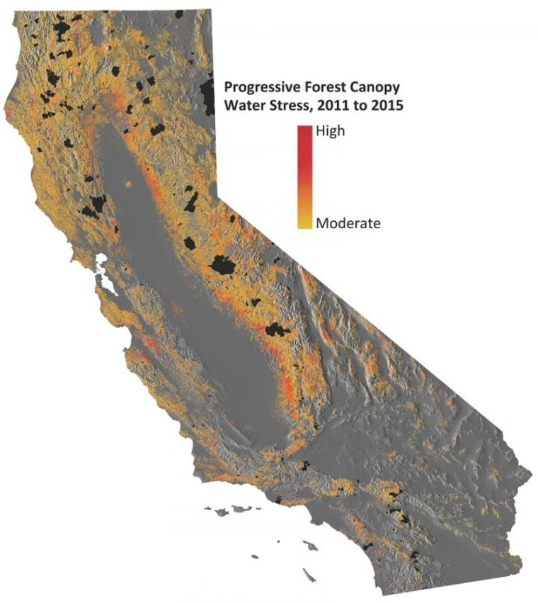 This image shows progressive water stress on California's forests.
