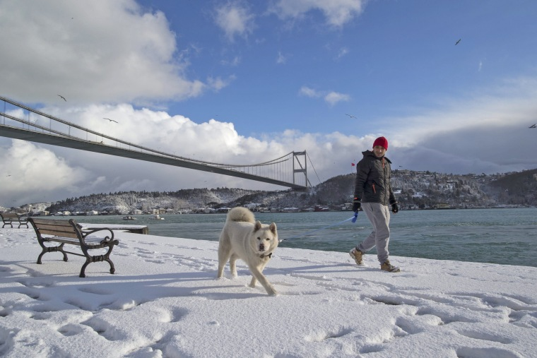 Image: Snowy day in Istanbul