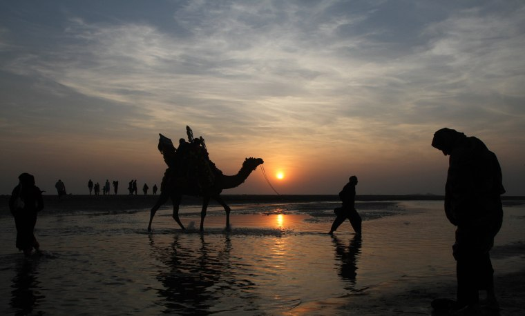 Image: People and a camel are silhouetted against the last sunset of 2015 at Clifton beach in Karachi