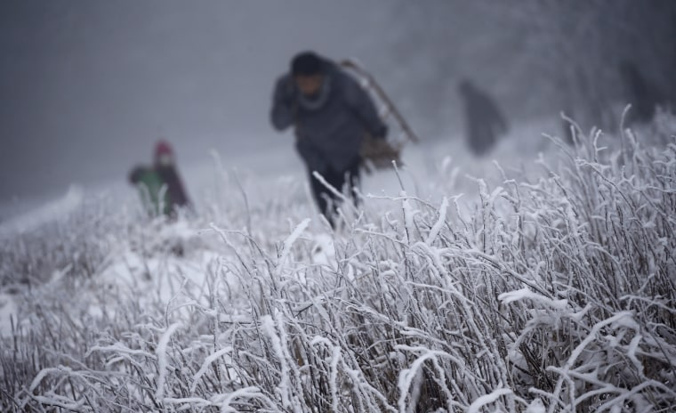 Image: People carry their sledges up the hill during this winter's first snow at the Feldberg mountain