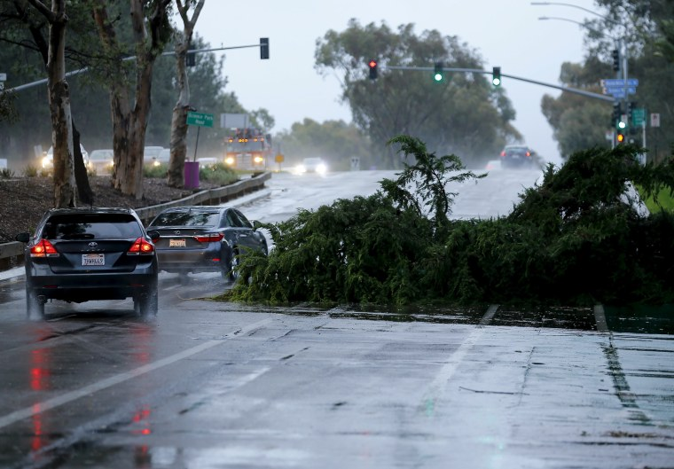 Image: A downed tree blocks a highway as an El Nino-strengthened storm brings rain and wind to San Diego