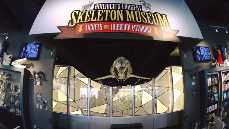Orlando's Skeleton Museum