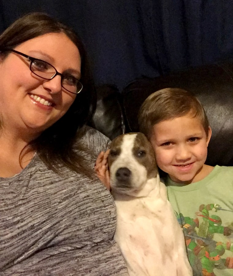 Paula Williams filmed her son reuniting with his missing dog