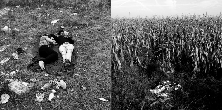 Image: Men from Pakistan sleep in a field close in Subotica