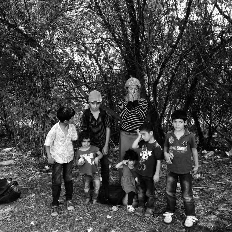 Image: An Iraqi Kurdish mother pauses with her children as they crossed from Serbia into Hungary