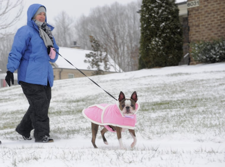 Image: A woman walks her dog as snow falls in Kernersville, N.C.