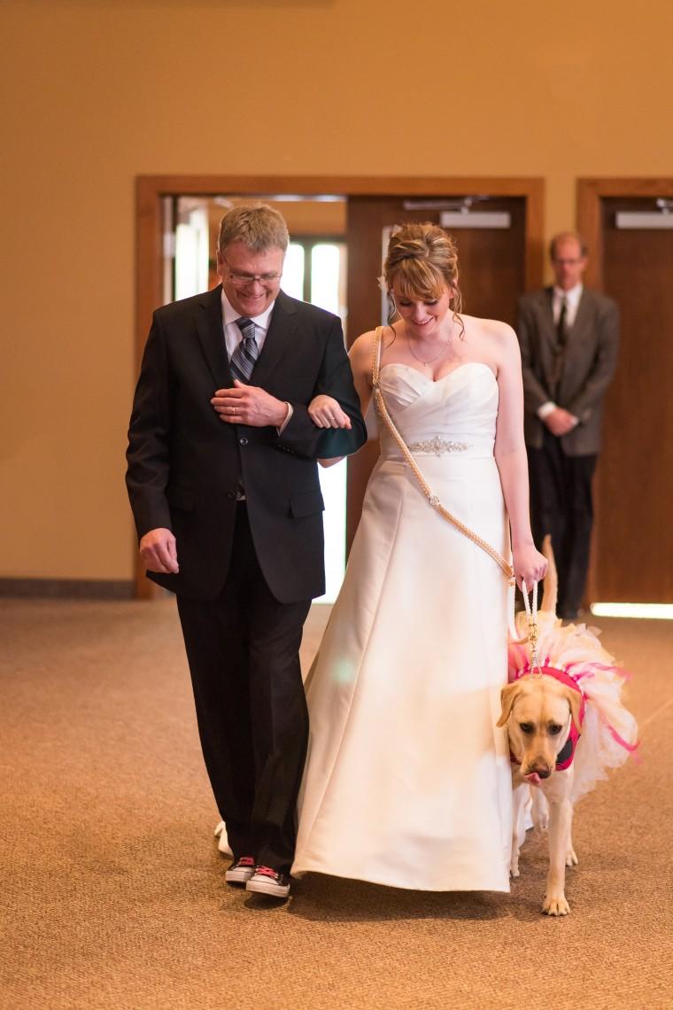 Excl: Service dog Bella calms down bride on wedding day