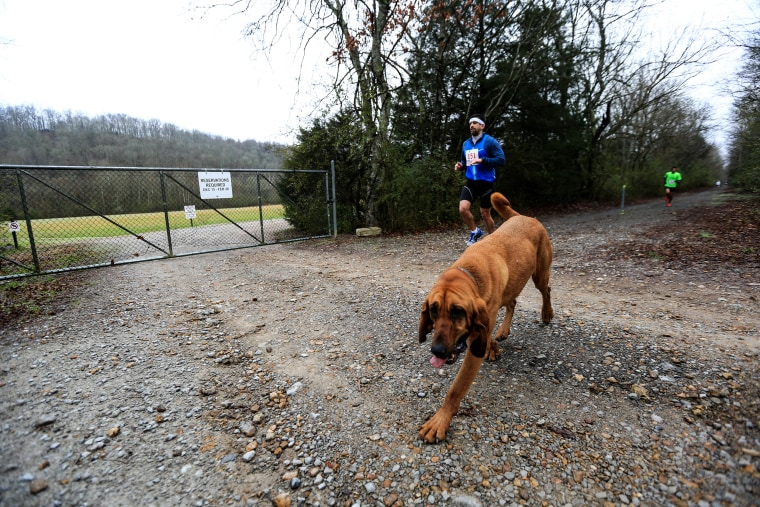 Ludivine may very well have earned a place in Elkmont history. This year's race was the first, and the next could be named in her honor.