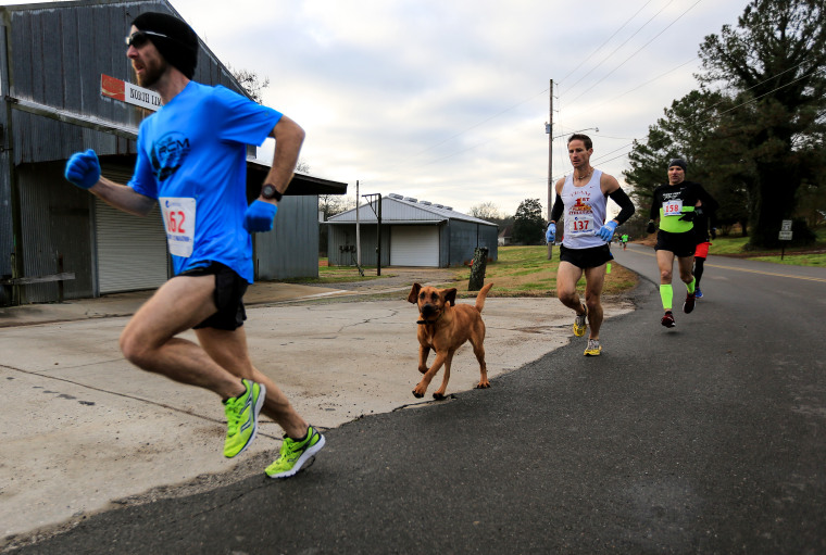 """All I did was open the door, and she ran the race on her own accord,"" April Hamlin, told Runner's World.