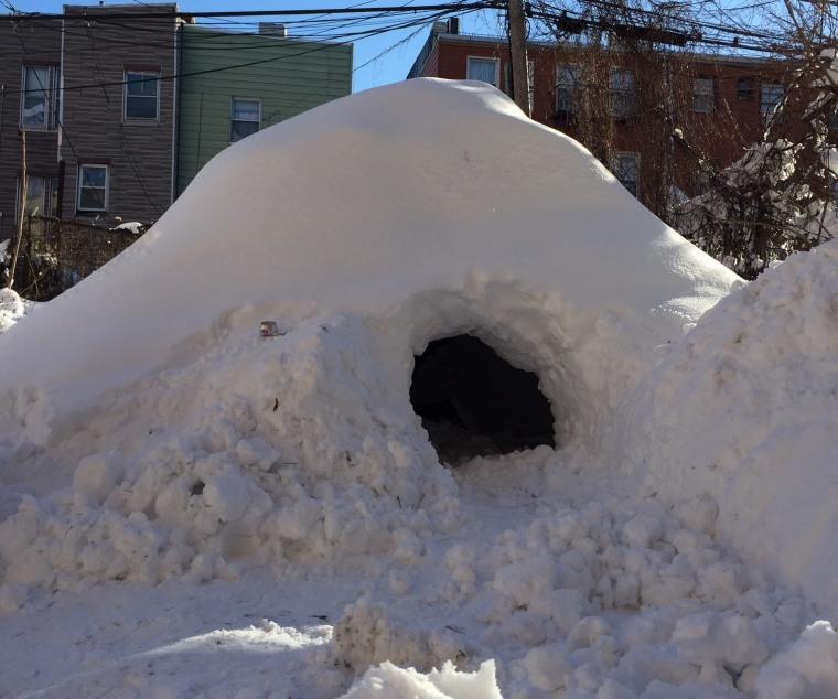 IMAGE: An igloo grows in Brooklyn