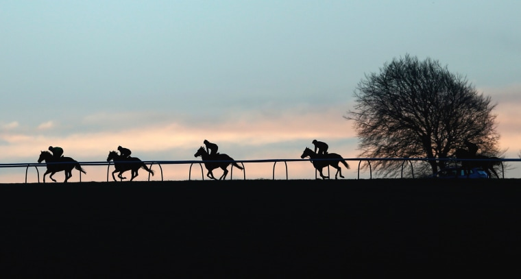 Image: Racehorses are seen early mormimg on the gallops at Upper Lambourn