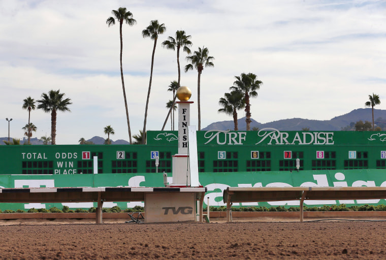 The finish line of the horse racing track at Turf Paradise is seen, Friday, Jan. 29, 2016, in Phoenix.