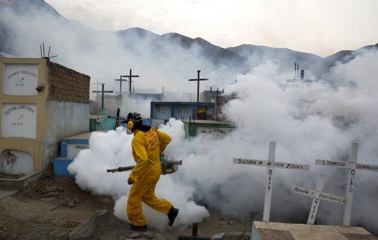 Image: A health worker carries out fumigation as part of preventive measures against the Zika virus and other mosquito-borne diseases at the cemetery of Carabayllo on the outskirts of Lima