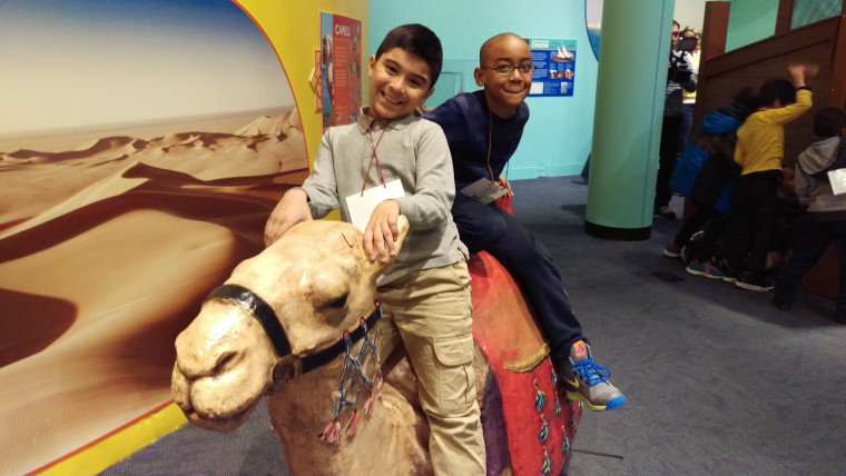 "Two friends retrace ancient trade routes on a camel at the Children's Museum of Manhattan's new exhibit, ""America to Zanzibar: Muslim Cultures Near and Far."""