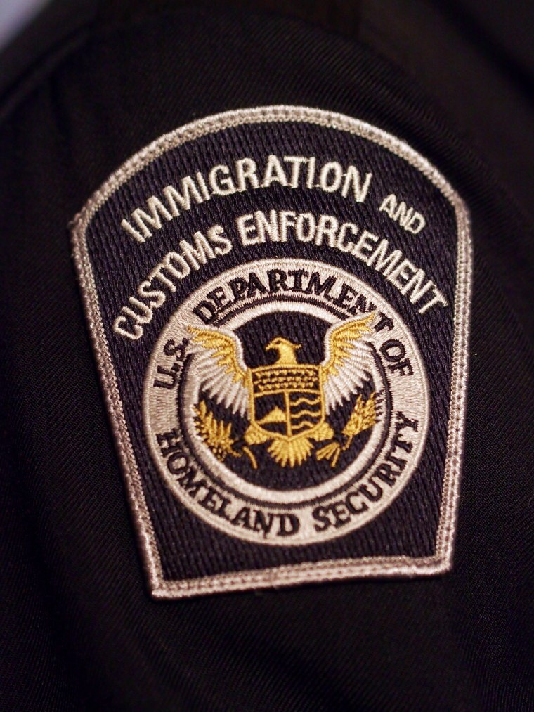 Image: Immigration and Customs Enforcement Patch