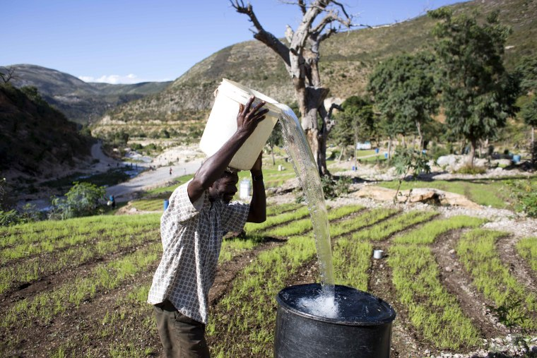 Image: Drought in Haiti 8