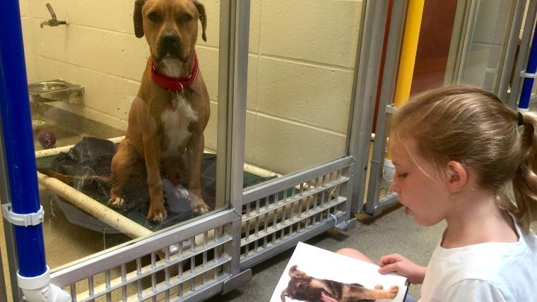 Summer camper turned regular volunteer Alex Hinsley reads to her dog buddy Wilbur.