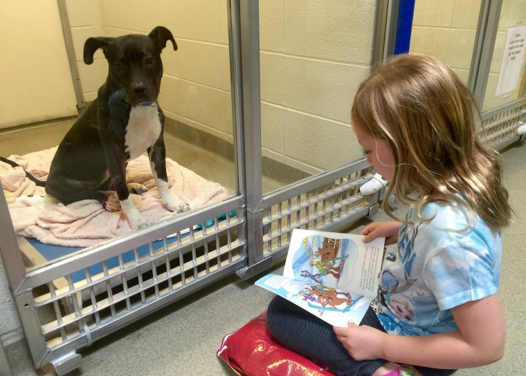 Volunteer Alex Hinsley, 8, with Annie. Alex believes the dogs listen better to stories about other dogs.