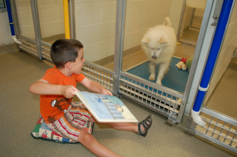 """""""Just look at the dogs in these photos,"""" Klepacki said. """"You can see them responding to those kids."""""""