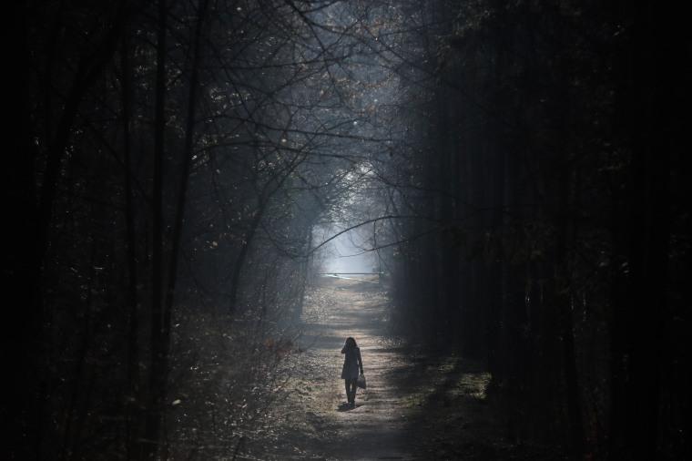 A woman strolls in the Grunewald forest in Berlin.