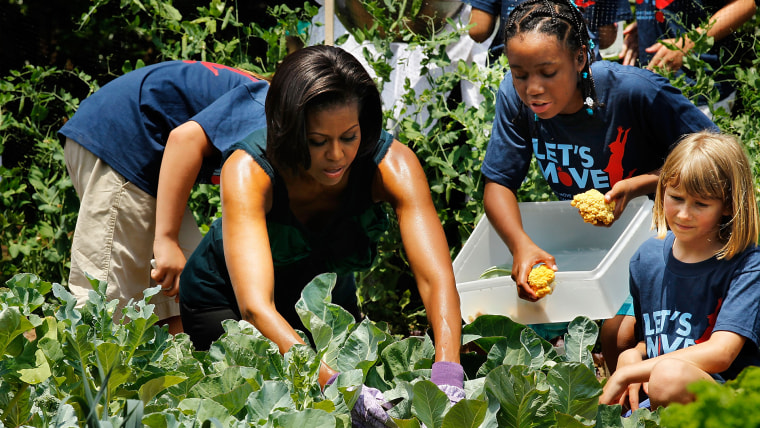 Michelle Obama Hosts Chefs, Harvests From White House Garden