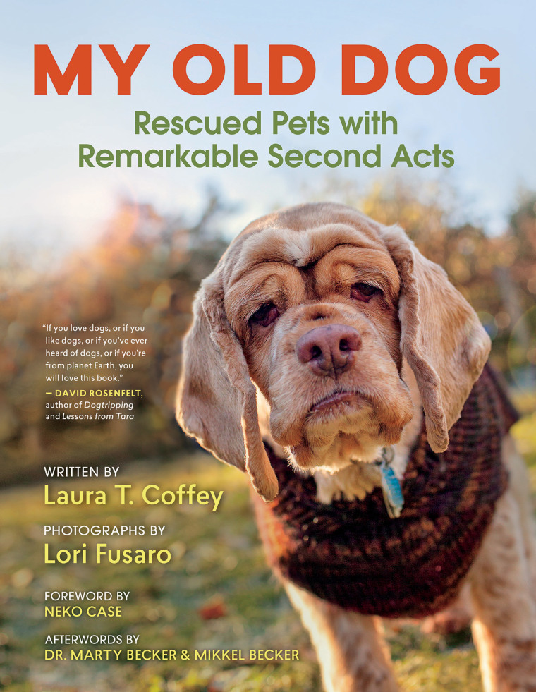 """Book cover for """"My Old Dog: Rescued Pets with Remarkable Second Acts"""""""