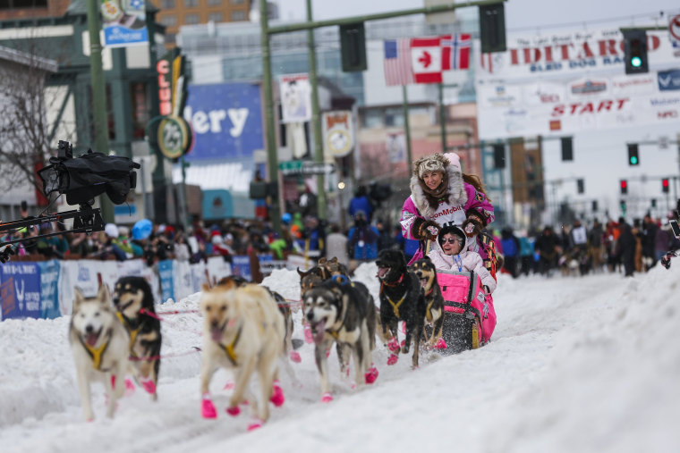 Image: Iditarod Trail Sled Dog Race 03