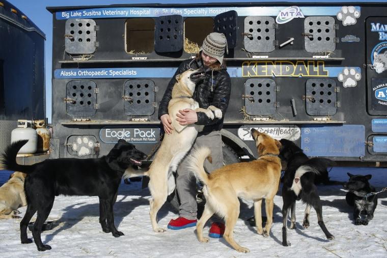 Image: Iditarod Trail Sled Dog Race 06