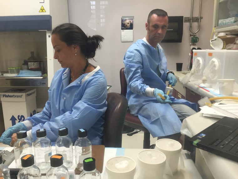 CDC staffers test pesticides at the CDC's dengue lab in Puerto Rico. The agency has adjusted work at its dengue research center to focus on fighting Zika, a related virus.