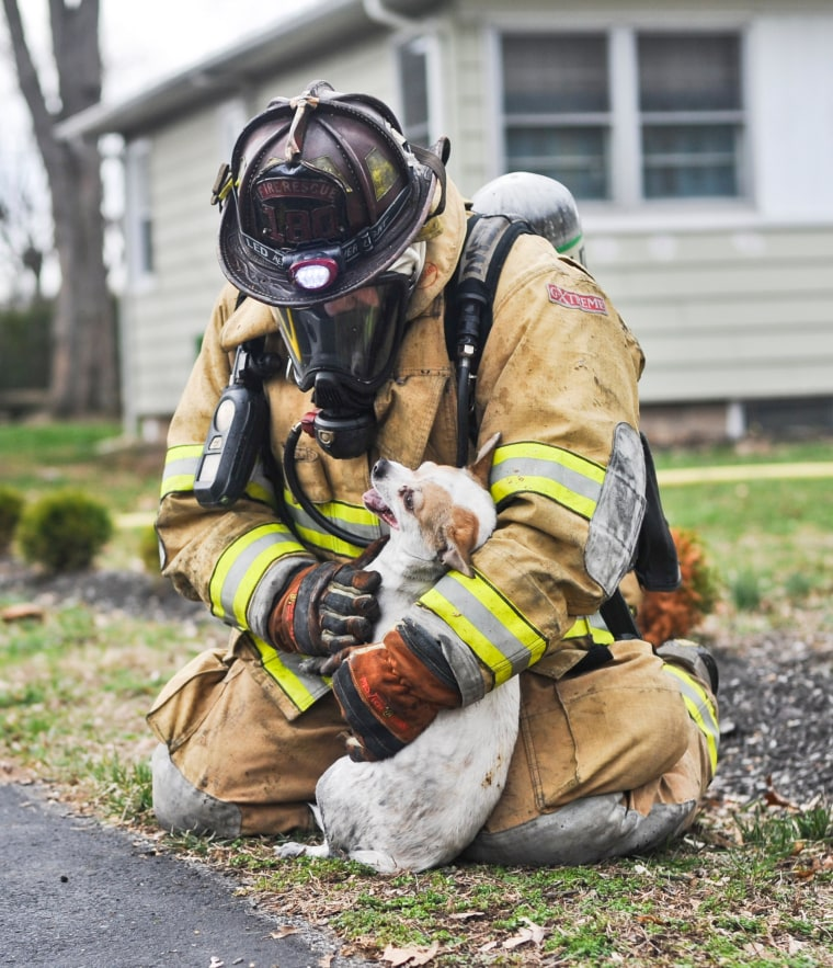 Image: firefighter Scott Dawson saves a dog