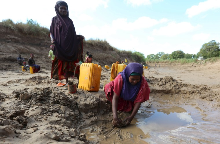 Image: People collect water from shallow wells dug along the Shabelle River bed, which is dry due to drought in Somalia's Shabelle region