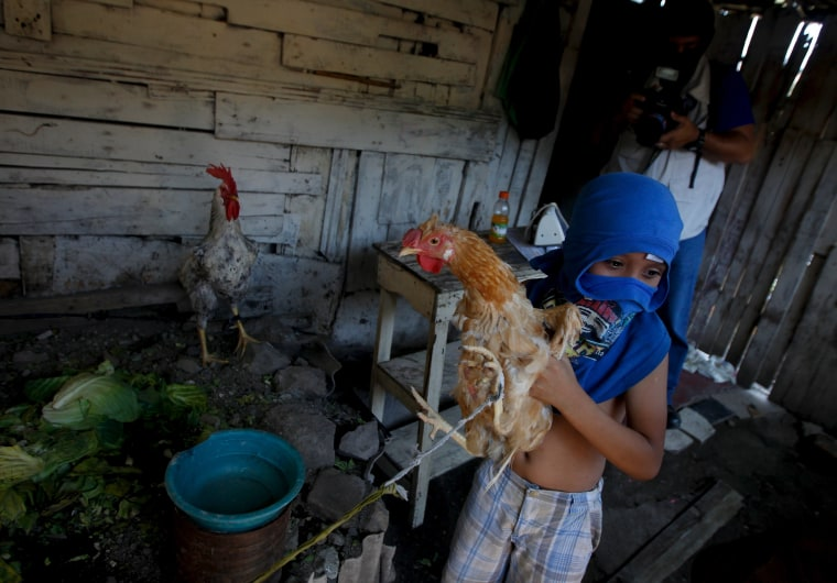 Child covers his face for security reasons while holding a hen before fleeing Las Torres neighbourhood.