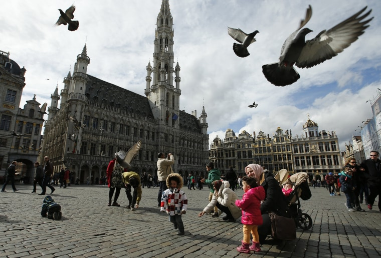 Image: Pigeons take flight as tourists feed them in the Grand Place in Brussels