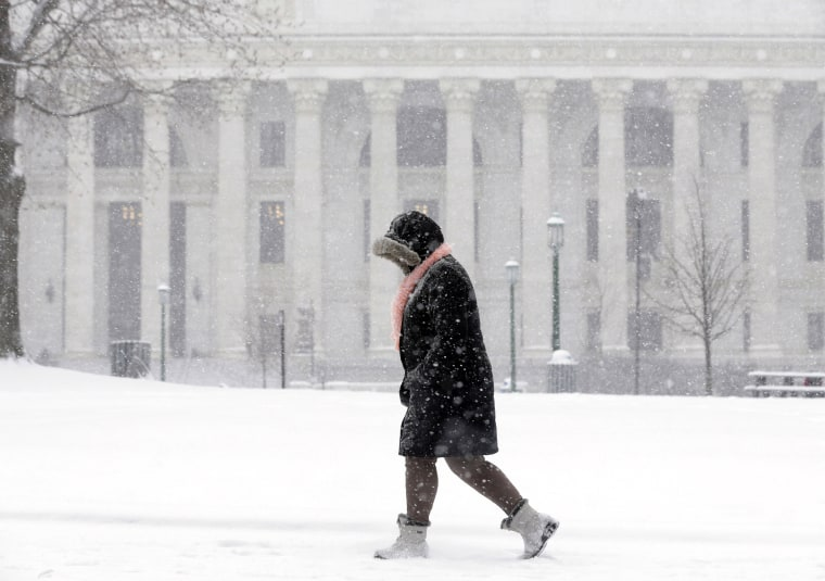 Image: A pedestrian walks in the snow in Albany