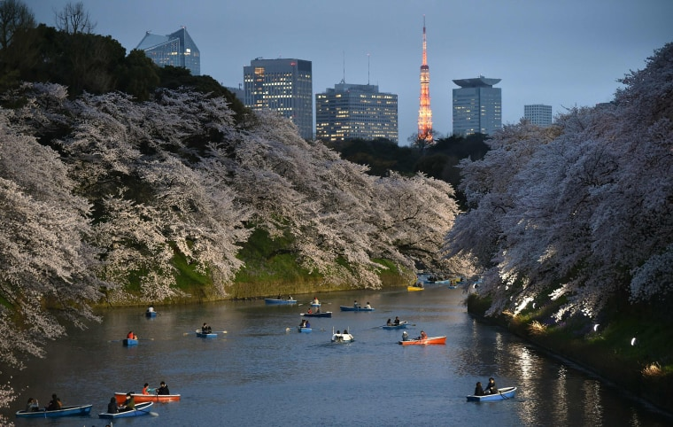 Image: Visitors row boats in a moat surrounding Edo Castle in Tokyo