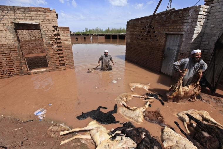 Image: Torrential rains kill 53 people in Pakistan