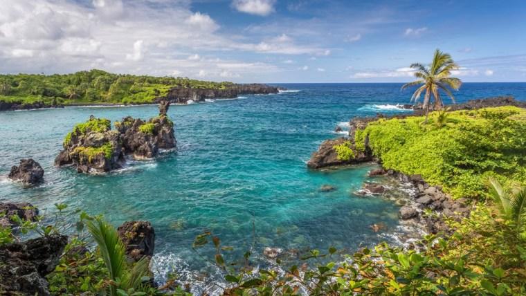 Image: Waianapanapa landscape, just before Hana on the island of Maui, Hawaii with turquoise water, black lava rocks and lush green vegetation, just before Hana on the island of Maui, Hawaii