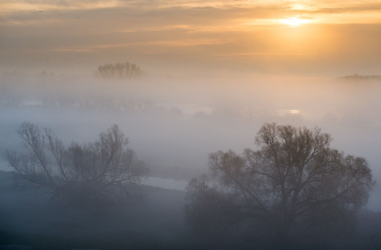 Image: Fog is clearing from the river Oder and one of its tributaries during sunrise near Lebus