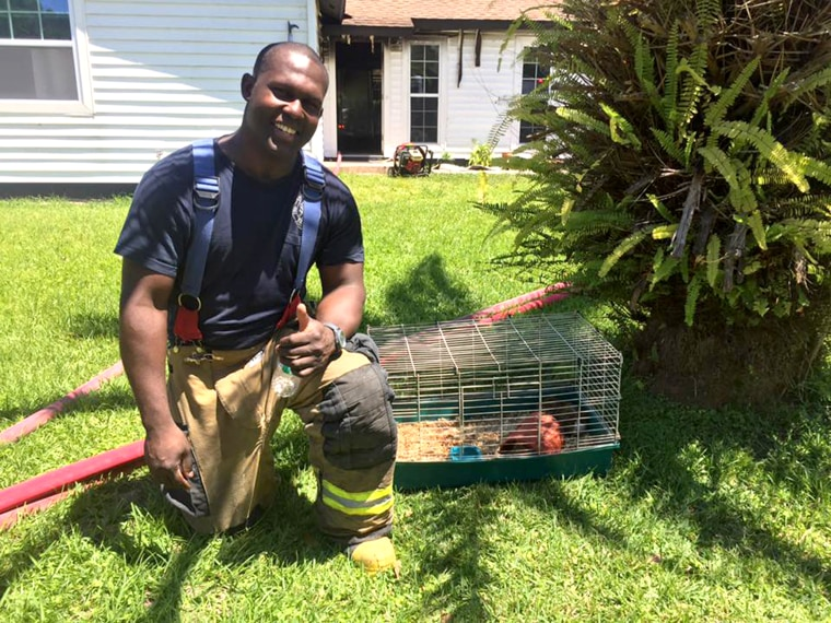Firefighter John Williams rescued Rodney