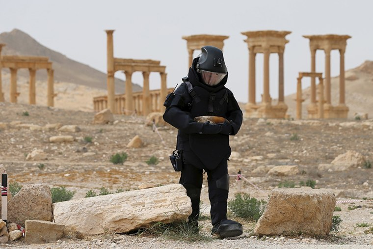 Image: A Russian army sapper works at the historic part of Palmyra, Syria, in this handout photo released by Russian Ministry of Defence
