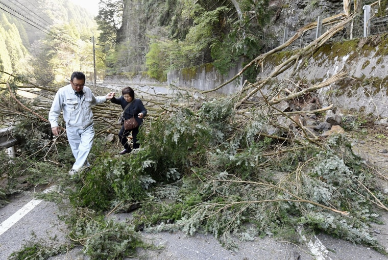 Image: Trees block a national highway in Hita