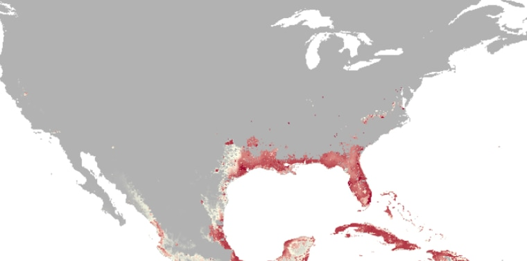 New Map Finds 2 Billion People At Risk of Zika Virus