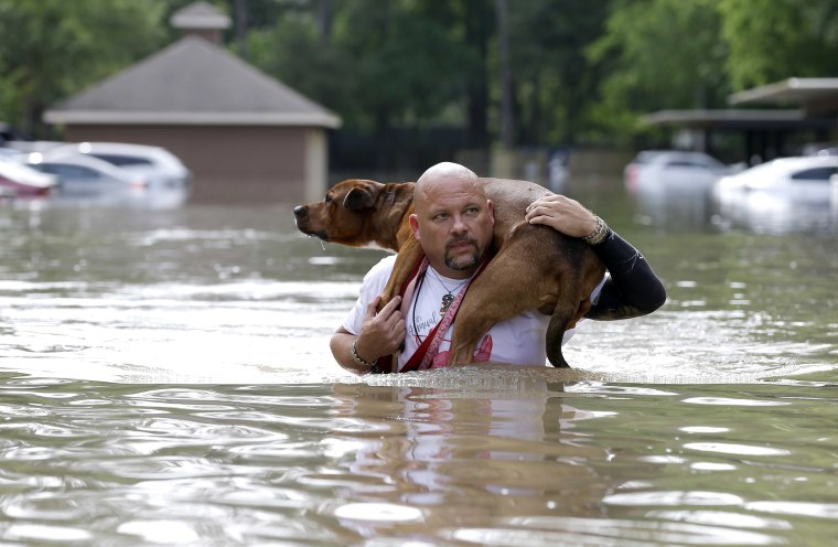 Image: Louis Marquez carries his dog Dallas through floodwaters