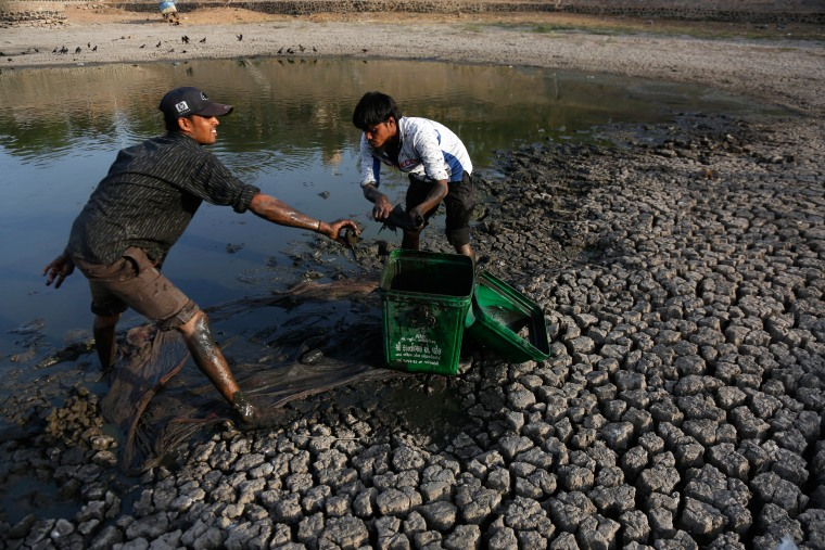 Image: India drought
