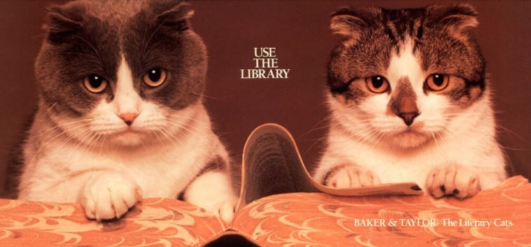 Baker and Taylor library cats