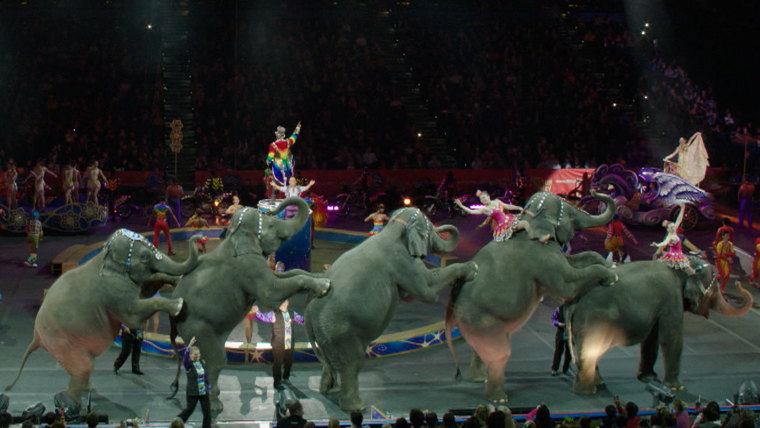 End of era at Ringling Brothers' shows as elephants have final circus perfomance.