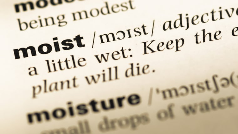 "dictionary definition of the word ""moist"""