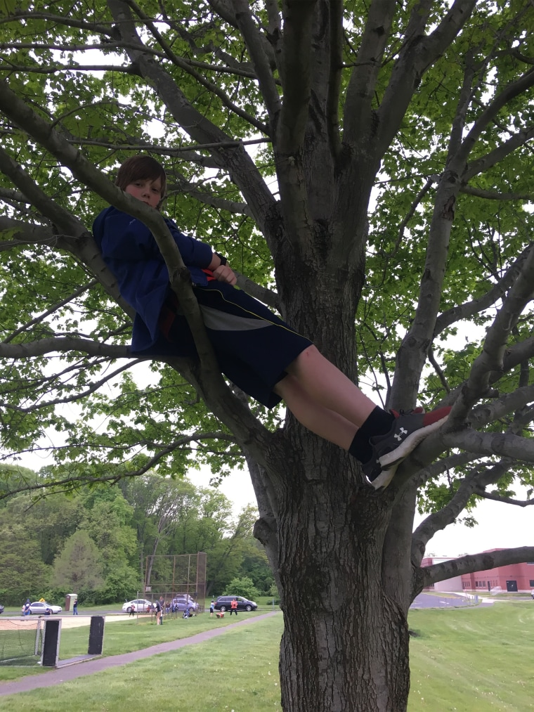 Ryan Holcombe in the tree near his middle school.